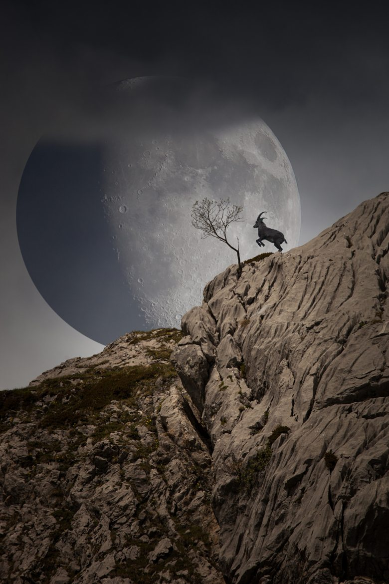 Full Moon and Goat