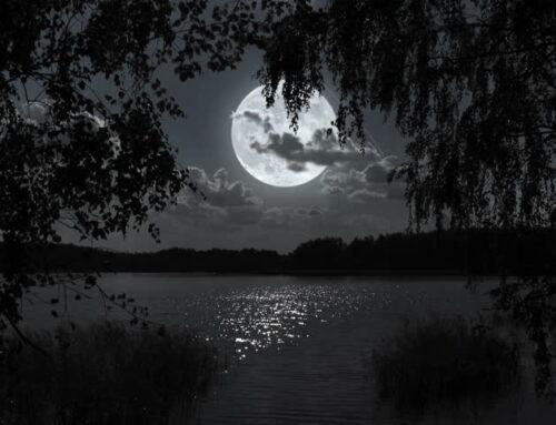 September Pisces Full Moon 2020